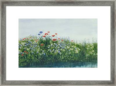 Poppies By A Stream Framed Print by Andrew Nicholl
