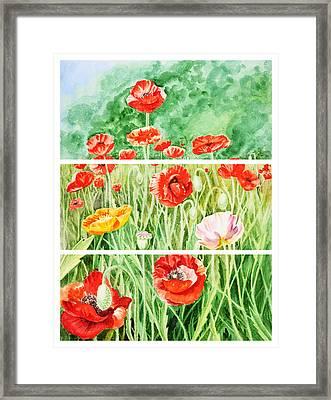 Poppies Collage II Framed Print by Irina Sztukowski