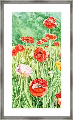 Poppies Impressions I Framed Print by Irina Sztukowski