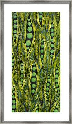 Popping Pods Framed Print by Linda Carmel