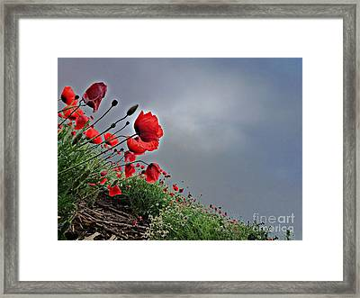 Poppy Field After Summer Storm Framed Print by AmaS Art