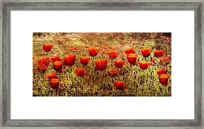 Poppy Field Framed Print by Georgia Fowler