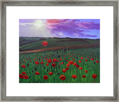 Poppy Field Framed Print by Janet Greer Sammons
