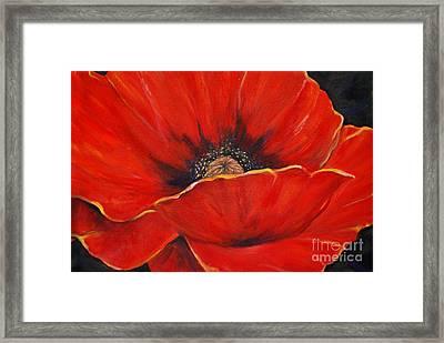 Poppy Framed Print by Nancy Bradley