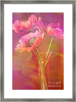 Poppy Passion Framed Print by Jan Bickerton
