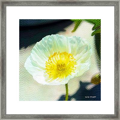 Poppy Series - Beside The Sidewalk Framed Print by Moon Stumpp