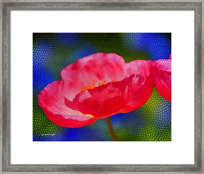 Poppy Series - Touch Framed Print by Moon Stumpp