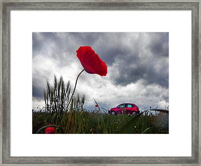 Poppy With Car Framed Print by Renata Vogl