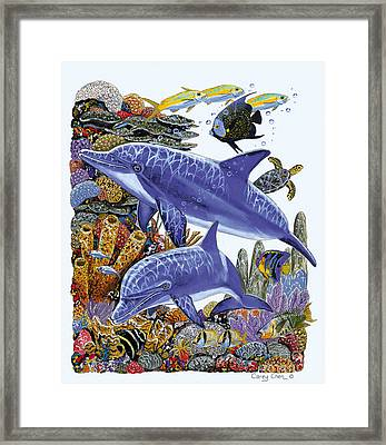 Porpoise Reef Framed Print by Carey Chen