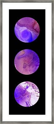 Portal B 4b Framed Print by Brian Allan