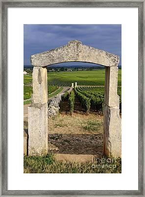 Portal  Of Vineyard.burgundy. France Framed Print by Bernard Jaubert