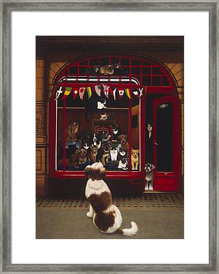 Portal Pet Show, 1993 Oils & Tempera On Panel Framed Print by Frances Broomfield