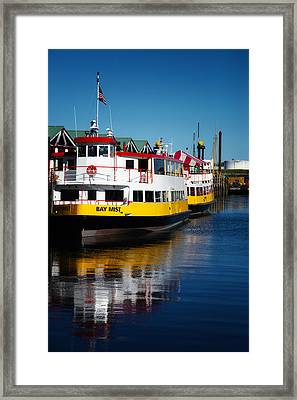Portlands Bay Mist Framed Print by Karol Livote