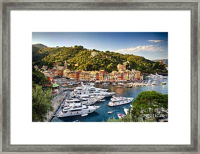 Portofino Summer Afternoon Framed Print by George Oze