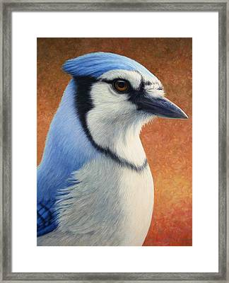 Portrait Of A Bluejay Framed Print by James W Johnson