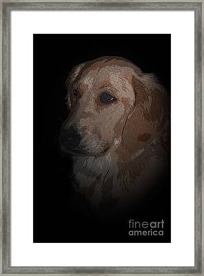 Portrait Of A Golden Framed Print by Bianca Nadeau