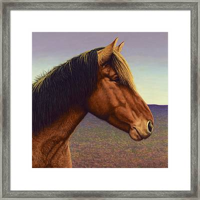 Portrait Of A Horse Framed Print by James W Johnson