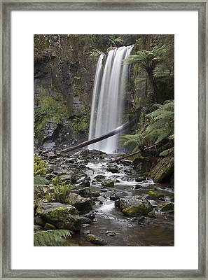 Portrait Of Hopetoun Falls Framed Print by Shari Mattox