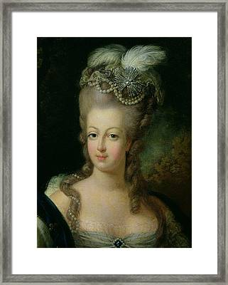 Portrait Of Marie Antoinette De Habsbourg Lorraine Framed Print by French School