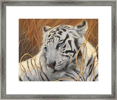 Portrait White Tiger 1 Framed Print by Lucie Bilodeau