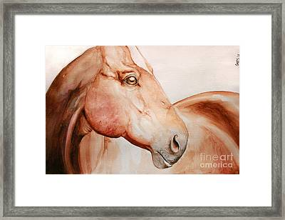 Posing Framed Print by Tamer and Cindy Elsharouni
