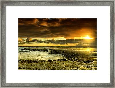 Positive Reinforcement Framed Print by Andrew Paranavitana