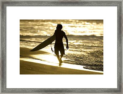 Post Surf Gold Framed Print by Sean Davey