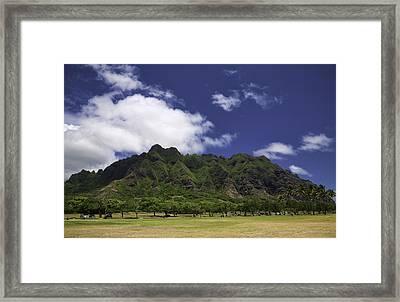 Postcard From Oahu Framed Print by Joanna Madloch