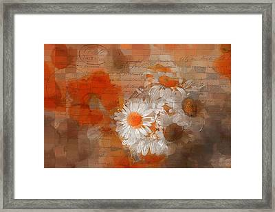 Pot Of Daisies 02 - J33027100rgn1c Framed Print by Variance Collections