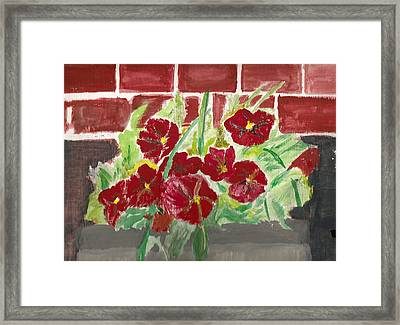 Pot Of Petunias Framed Print by Rob Spencer