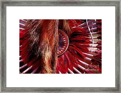 Pow-wow Costume Framed Print by Paul W Faust -  Impressions of Light