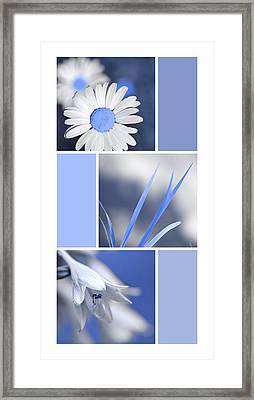 Powder Blue Flowers Collage Framed Print by Christina Rollo
