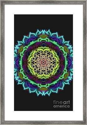 Power Of Attraction Framed Print by Uma Swaminathan