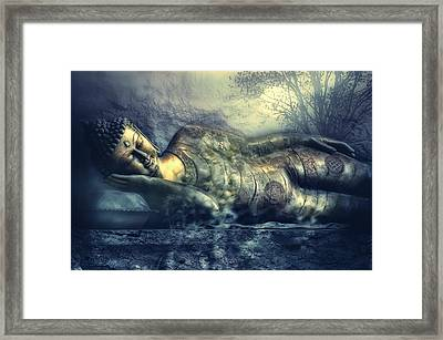 Power Of Silence Framed Print by Joachim G Pinkawa