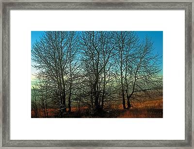 Prairie Autumn Framed Print by Terry Reynoldson