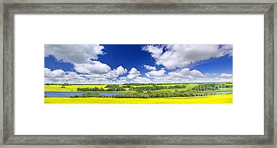 Prairie Panorama In Saskatchewan Framed Print by Elena Elisseeva
