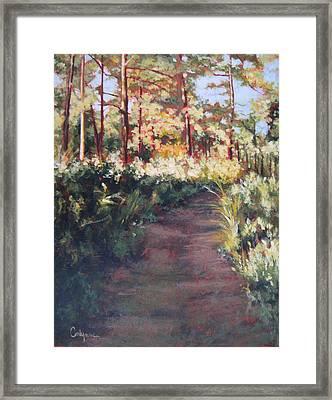 Prairie Walk Framed Print by Carlynne Hershberger