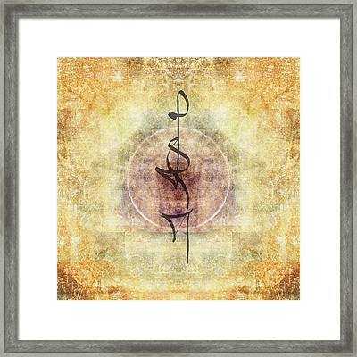 Prayer Flag 29 Framed Print by Carol Leigh
