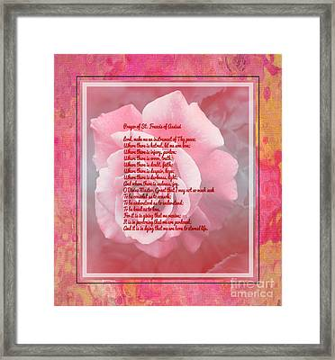 Prayer Of St. Francis And Pink Rose Framed Print by Barbara Griffin
