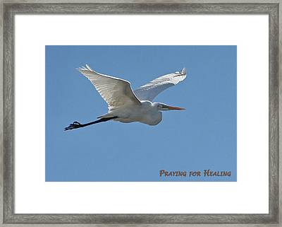 Praying For Healing Framed Print by Dawn Currie