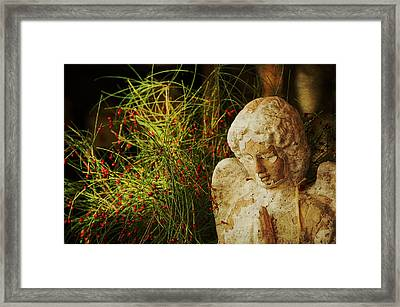 Praying For Peace Framed Print by Terry Rowe
