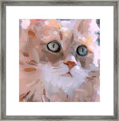 Pretty Cat Woman Framed Print by Yury Malkov