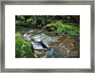 Pretty Green Creek Framed Print by Kaye Menner