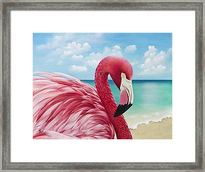 Pretty In Pink Framed Print by Carolyn Steele