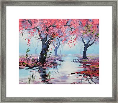 Pretty In Pink Framed Print by Graham Gercken