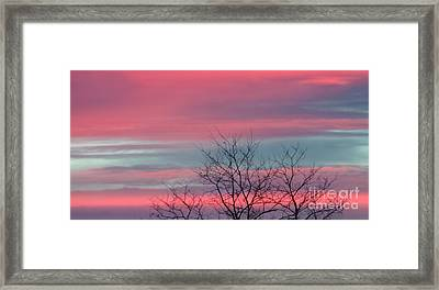 Pretty In Pink Sunrise Framed Print by Charlie Cliques