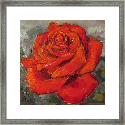 Pretty In Red Rose Oil Painting Framed Print by Robie Benve