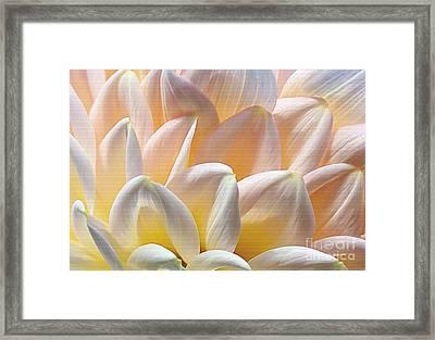 Pretty Pastel Petal Patterns Framed Print by Kaye Menner