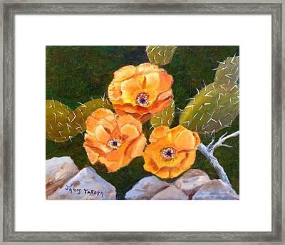 Prickley Pear Cactus Framed Print by Janis  Tafoya