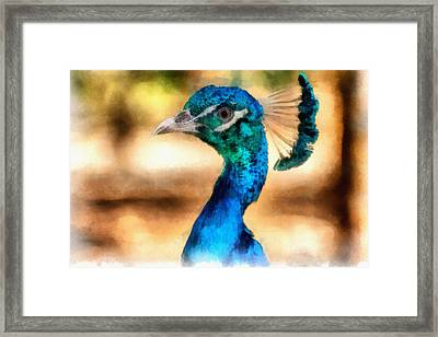 Pride Framed Print by Ayse Deniz